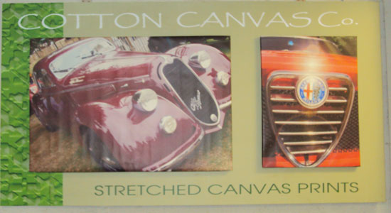 Cotton Canvas Co - Canvas Print